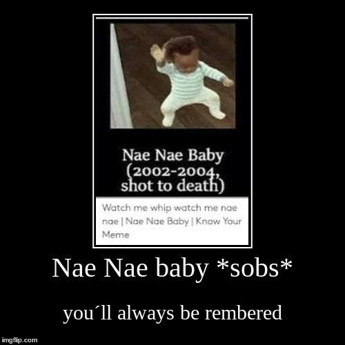 Nae Nae baby *sobs* | you´ll always be rembered | image tagged in funny,demotivationals | made w/ Imgflip demotivational maker