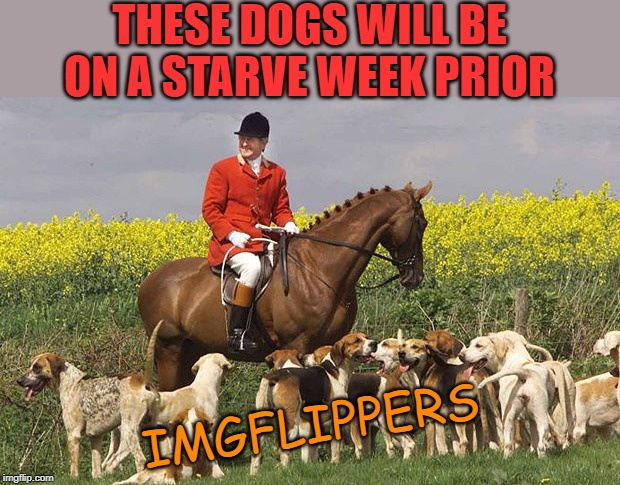 Fox Hunting | THESE DOGS WILL BE ON A STARVE WEEK PRIOR IMGFLIPPERS | image tagged in fox hunting | made w/ Imgflip meme maker