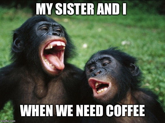 Bonobo Lyfe |  MY SISTER AND I; WHEN WE NEED COFFEE | image tagged in memes,bonobo lyfe | made w/ Imgflip meme maker