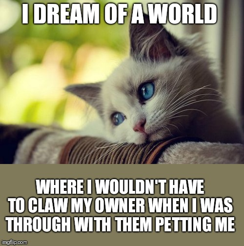 First World Problems Cat | I DREAM OF A WORLD WHERE I WOULDN'T HAVE TO CLAW MY OWNER WHEN I WAS THROUGH WITH THEM PETTING ME | image tagged in memes,first world problems cat | made w/ Imgflip meme maker