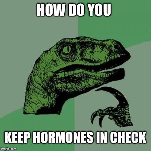 Philosoraptor | HOW DO YOU KEEP HORMONES IN CHECK | image tagged in memes,philosoraptor | made w/ Imgflip meme maker