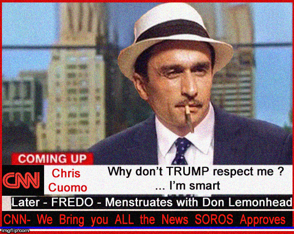 FREDO isn't really political....just stupid and funny really...really | image tagged in fredo,cnn fake news,lol,funny memes,hilarious,godfather | made w/ Imgflip meme maker