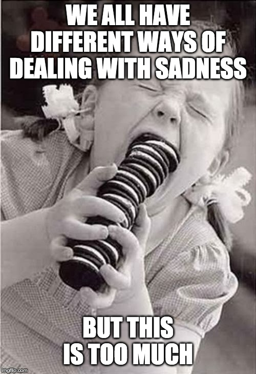 Cookies | WE ALL HAVE DIFFERENT WAYS OF DEALING WITH SADNESS BUT THIS IS TOO MUCH | image tagged in cookies | made w/ Imgflip meme maker