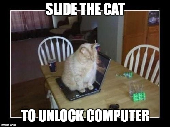 SLIDE THE CAT; TO UNLOCK COMPUTER | image tagged in cat,computer | made w/ Imgflip meme maker