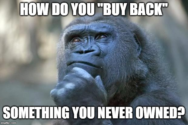 "Gun ""Buy Backs"" 