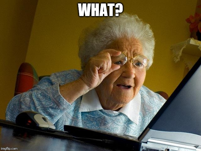 Grandma Finds The Internet Meme | WHAT? | image tagged in memes,grandma finds the internet | made w/ Imgflip meme maker