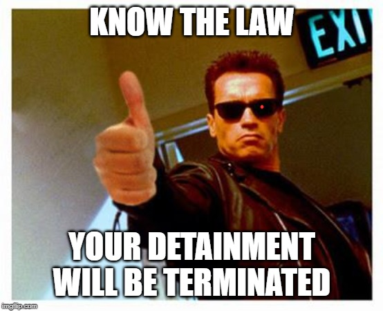 terminator thumbs up | KNOW THE LAW YOUR DETAINMENT WILL BE TERMINATED | image tagged in terminator thumbs up | made w/ Imgflip meme maker