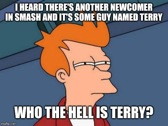 Can someone tell me who is Terry? | I HEARD THERE'S ANOTHER NEWCOMER IN SMASH AND IT'S SOME GUY NAMED TERRY WHO THE HELL IS TERRY? | image tagged in memes,futurama fry,smash bros | made w/ Imgflip meme maker