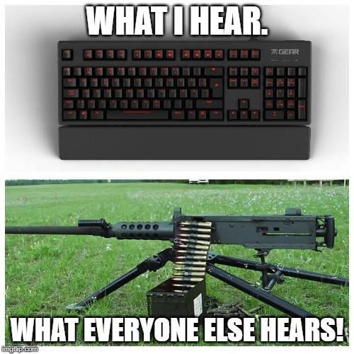 Mechanical Keyboards | WHAT I HEAR. WHAT EVERYONE ELSE HEARS! | image tagged in mechanical keyboards,loud keyboards | made w/ Imgflip meme maker