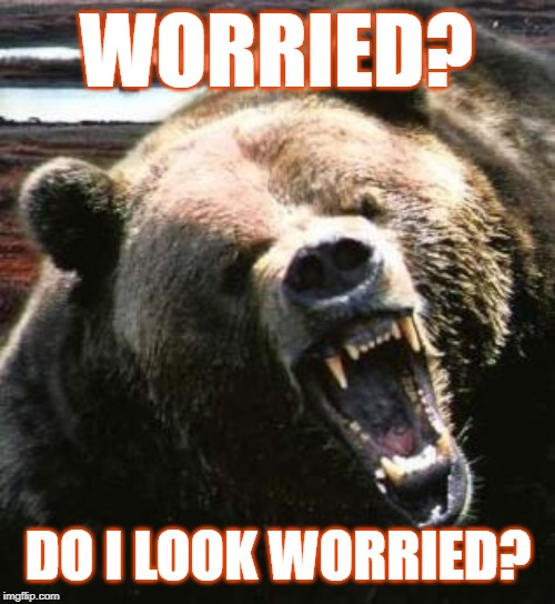 Worried? | WORRIED? DO I LOOK WORRIED? | image tagged in worried,bears,chicago bears,packers,green bay packers,da bears | made w/ Imgflip meme maker