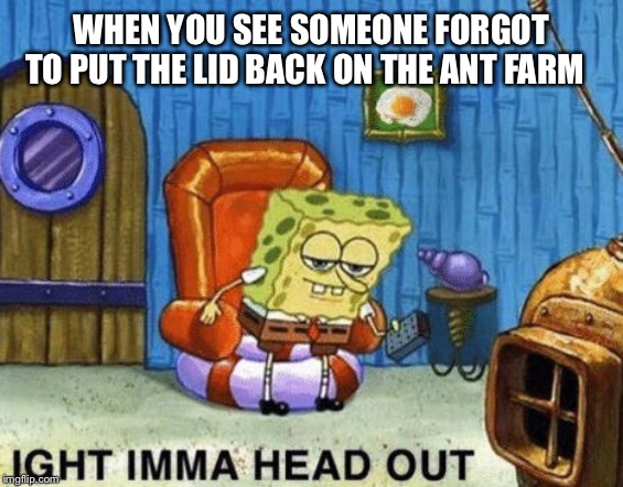 Ants in my square pants |  WHEN YOU SEE SOMEONE FORGOT TO PUT THE LID BACK ON THE ANT FARM | image tagged in ight imma head out,spongebob squarepants,spongebob ight imma head out | made w/ Imgflip meme maker