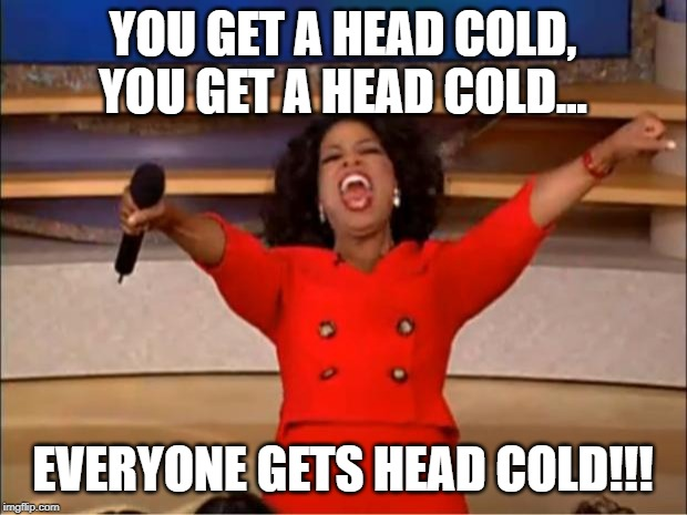 Oprah You Get A Meme | YOU GET A HEAD COLD, YOU GET A HEAD COLD... EVERYONE GETS HEAD COLD!!! | image tagged in memes,oprah you get a | made w/ Imgflip meme maker