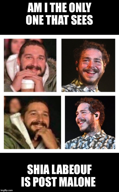 Labeouf Malone | AM I THE ONLY ONE THAT SEES SHIA LABEOUF IS POST MALONE | image tagged in ugly twins | made w/ Imgflip meme maker