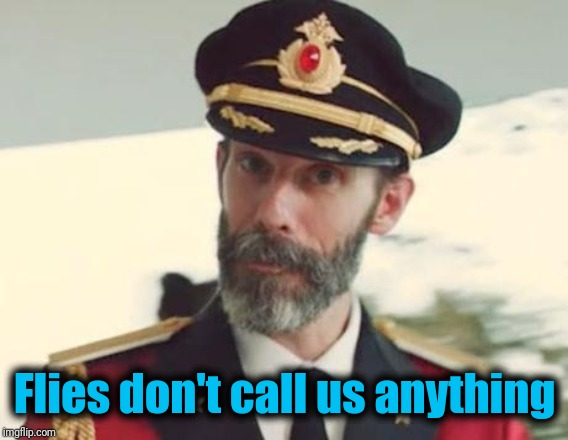 Captain Obvious | Flies don't call us anything | image tagged in captain obvious | made w/ Imgflip meme maker