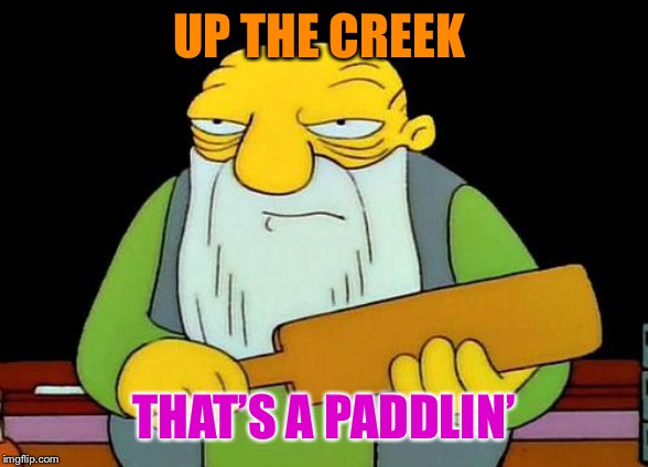 That's a paddlin' Meme | UP THE CREEK THAT'S A PADDLIN' | image tagged in memes,that's a paddlin' | made w/ Imgflip meme maker
