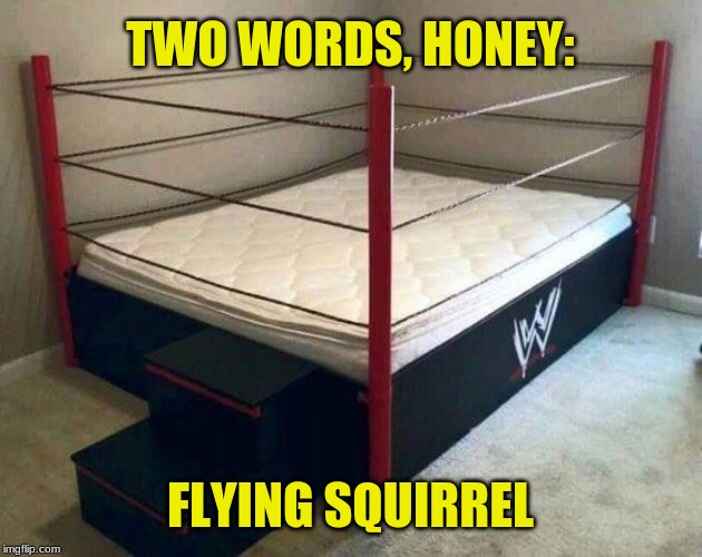 "WWE bed: At least the words weren't ""folding chair."" 