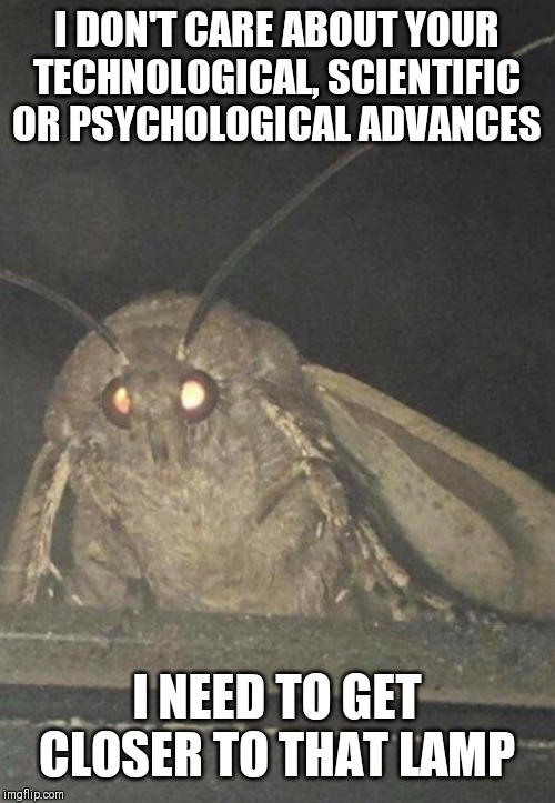Moth | I DON'T CARE ABOUT YOUR TECHNOLOGICAL, SCIENTIFIC OR PSYCHOLOGICAL ADVANCES I NEED TO GET CLOSER TO THAT LAMP | image tagged in moth | made w/ Imgflip meme maker