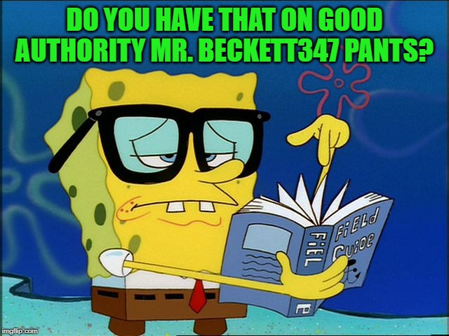 DO YOU HAVE THAT ON GOOD AUTHORITY MR. BECKETT347 PANTS? | made w/ Imgflip meme maker