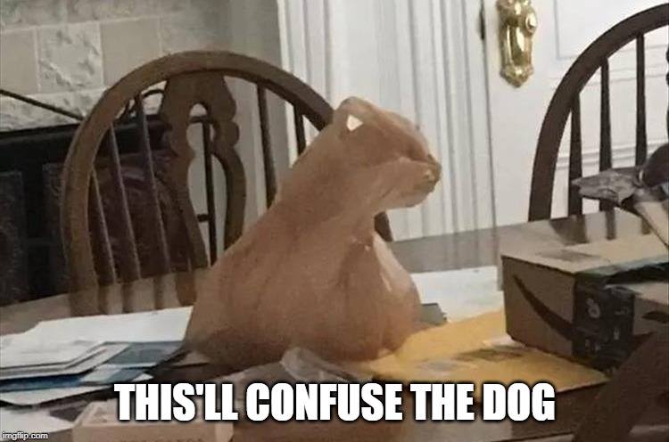 THIS'LL CONFUSE THE DOG | image tagged in memes,cat,grocery,bag,dog,funny | made w/ Imgflip meme maker