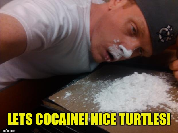 Coke Bump | LETS COCAINE! NICE TURTLES! | image tagged in coke bump | made w/ Imgflip meme maker