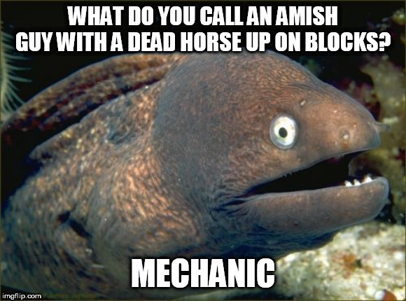 An amish joke for my Amish Week 9-2 to 9-9 | WHAT DO YOU CALL AN AMISH GUY WITH A DEAD HORSE UP ON BLOCKS? MECHANIC | image tagged in memes,bad joke eel,amish,theme week | made w/ Imgflip meme maker