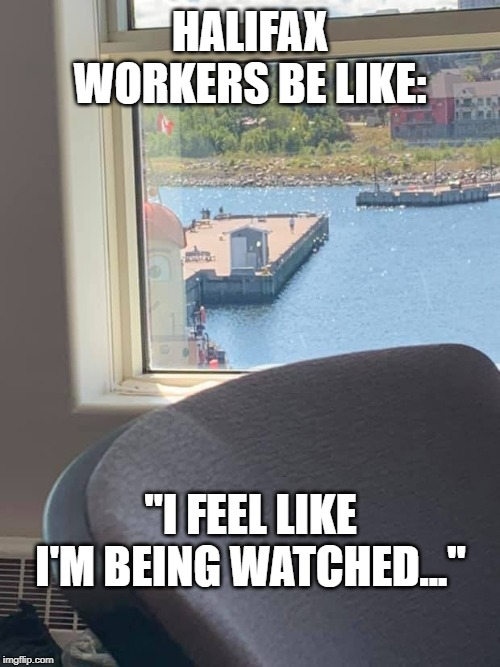 "Theodore the tugboat creepy | HALIFAX WORKERS BE LIKE: ""I FEEL LIKE I'M BEING WATCHED..."" 