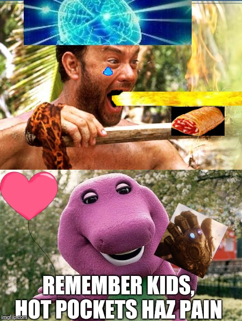 Only you can prevent forrest fires | REMEMBER KIDS, HOT POCKETS HAZ PAIN | image tagged in memes,castaway fire,barney,hot pockets,microwave,thanos | made w/ Imgflip meme maker