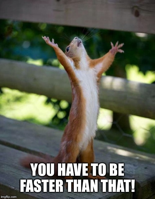 Happy Squirrel | YOU HAVE TO BE FASTER THAN THAT! | image tagged in happy squirrel | made w/ Imgflip meme maker
