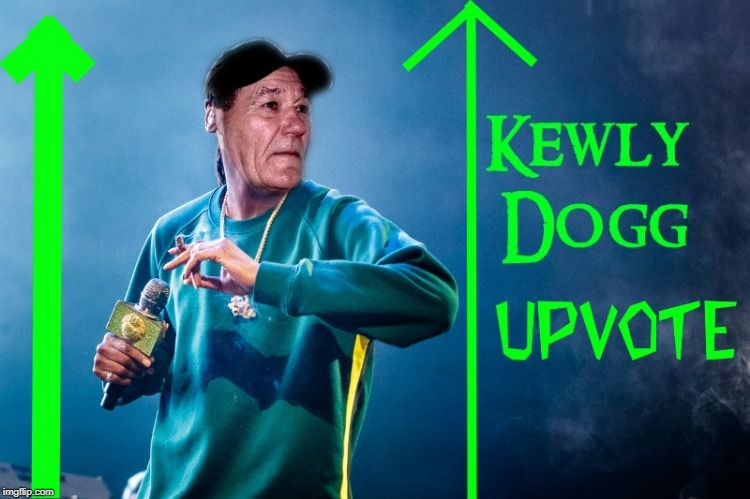 kewly dogg upvoter | image tagged in kewly dogg upvoter | made w/ Imgflip meme maker