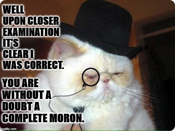 MORON | WELL UPON CLOSER EXAMINATION IT'S CLEAR I WAS CORRECT. YOU ARE WITHOUT A DOUBT A COMPLETE MORON. | image tagged in moron | made w/ Imgflip meme maker