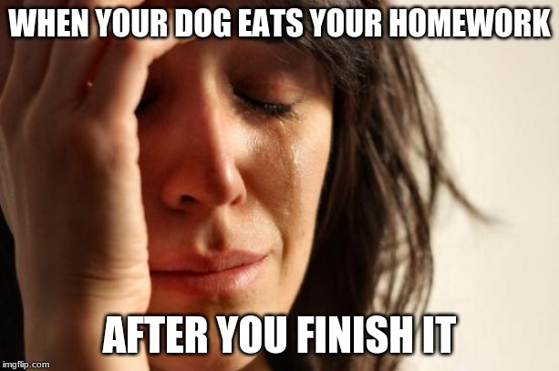 First World Problems Meme | WHEN YOUR DOG EATS YOUR HOMEWORK AFTER YOU FINISH IT | image tagged in memes,first world problems | made w/ Imgflip meme maker