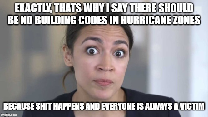 Crazy Alexandria Ocasio-Cortez | EXACTLY, THATS WHY I SAY THERE SHOULD BE NO BUILDING CODES IN HURRICANE ZONES BECAUSE SHIT HAPPENS AND EVERYONE IS ALWAYS A VICTIM | image tagged in crazy alexandria ocasio-cortez | made w/ Imgflip meme maker