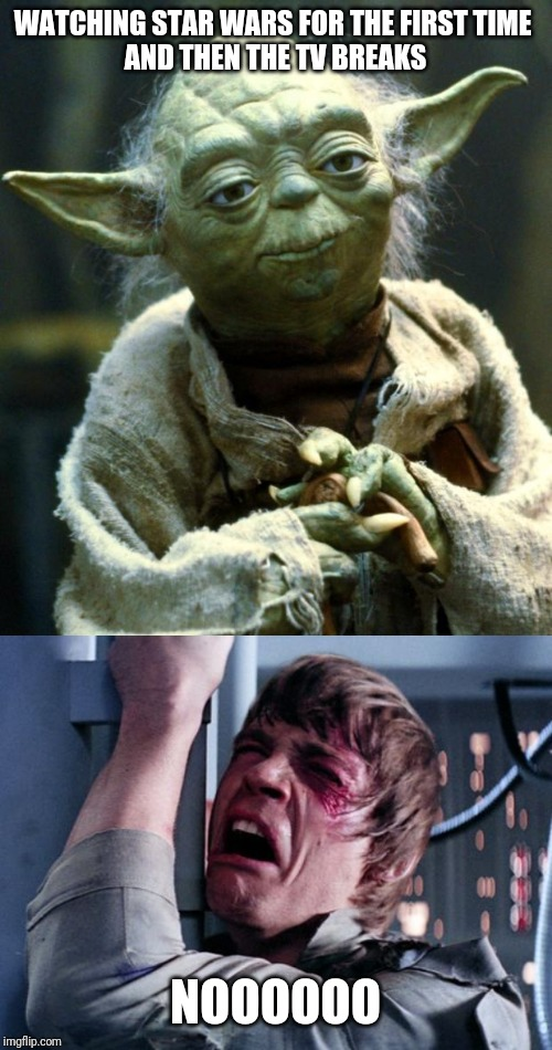 WATCHING STAR WARS FOR THE FIRST TIME    AND THEN THE TV BREAKS NOOOOOO | image tagged in memes,star wars yoda | made w/ Imgflip meme maker