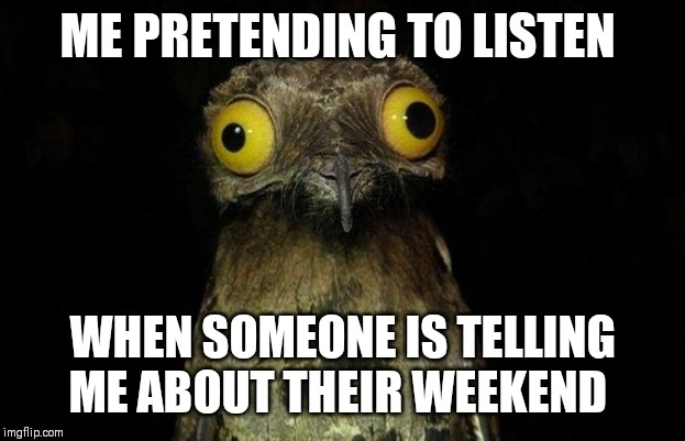 Weird Stuff I Do Potoo Meme | ME PRETENDING TO LISTEN WHEN SOMEONE IS TELLING ME ABOUT THEIR WEEKEND | image tagged in memes,weird stuff i do potoo | made w/ Imgflip meme maker