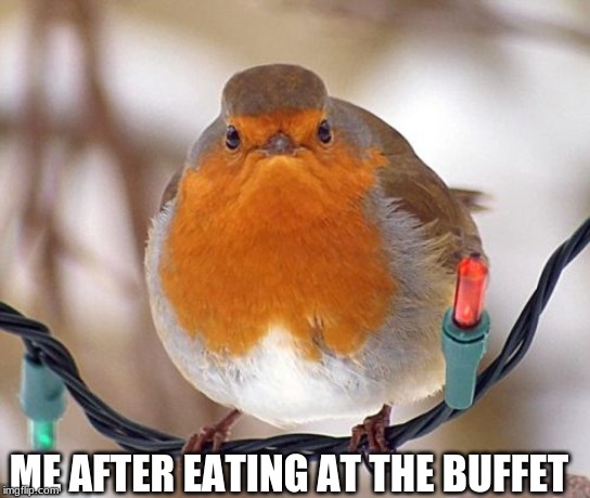 Bah Humbug Meme | ME AFTER EATING AT THE BUFFET | image tagged in memes,bah humbug | made w/ Imgflip meme maker