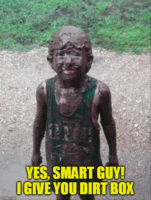 Dirty Child | YES, SMART GUY! I GIVE YOU DIRT BOX | image tagged in dirty child | made w/ Imgflip meme maker