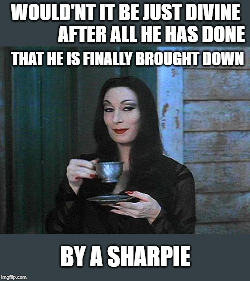 Could happen | WOULD'NT IT BE JUST DIVINE               AFTER ALL HE HAS DONE THAT HE IS FINALLY BROUGHT DOWN BY A SHARPIE | image tagged in memes,politics,maga,impeach trump | made w/ Imgflip meme maker