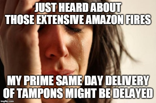 Amazon fires | JUST HEARD ABOUT THOSE EXTENSIVE AMAZON FIRES MY PRIME SAME DAY DELIVERY OF TAMPONS MIGHT BE DELAYED | image tagged in memes,first world problems | made w/ Imgflip meme maker