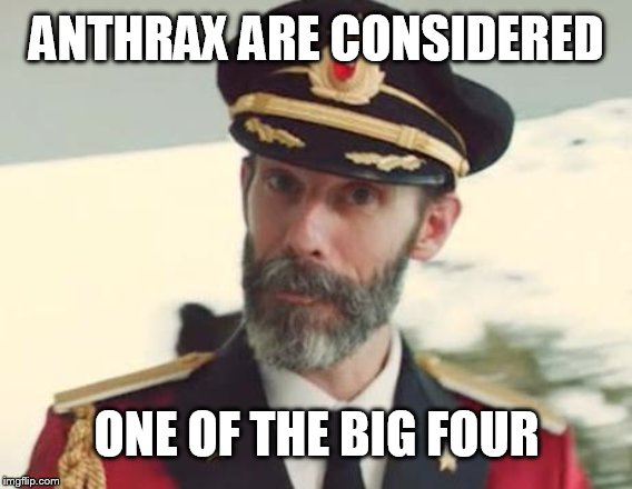 Captain Obvious | ANTHRAX ARE CONSIDERED ONE OF THE BIG FOUR | image tagged in captain obvious | made w/ Imgflip meme maker