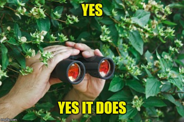 Creepy Guy in the bushes with Binoculars  | YES YES IT DOES | image tagged in creepy guy in the bushes with binoculars | made w/ Imgflip meme maker