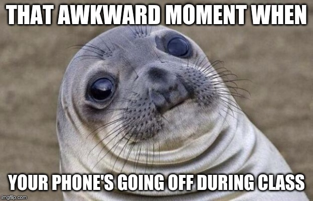 Awkward Moment Sealion | THAT AWKWARD MOMENT WHEN YOUR PHONE'S GOING OFF DURING CLASS | image tagged in memes,awkward moment sealion | made w/ Imgflip meme maker
