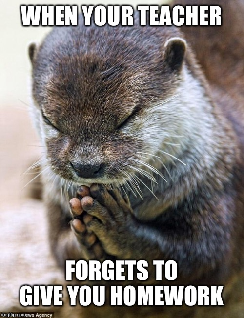 If only it happened more often! | WHEN YOUR TEACHER FORGETS TO GIVE YOU HOMEWORK | image tagged in thank you lord otter,isaac_laugh,funny,forgets to give you homework,otter | made w/ Imgflip meme maker