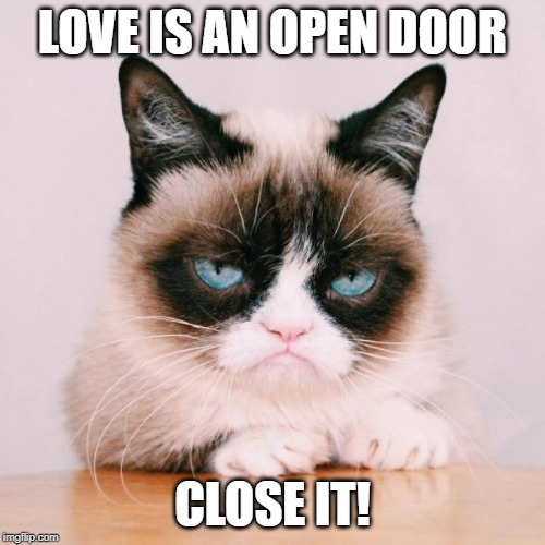 grumpy cat again | LOVE IS AN OPEN DOOR CLOSE IT! | image tagged in grumpy cat again | made w/ Imgflip meme maker