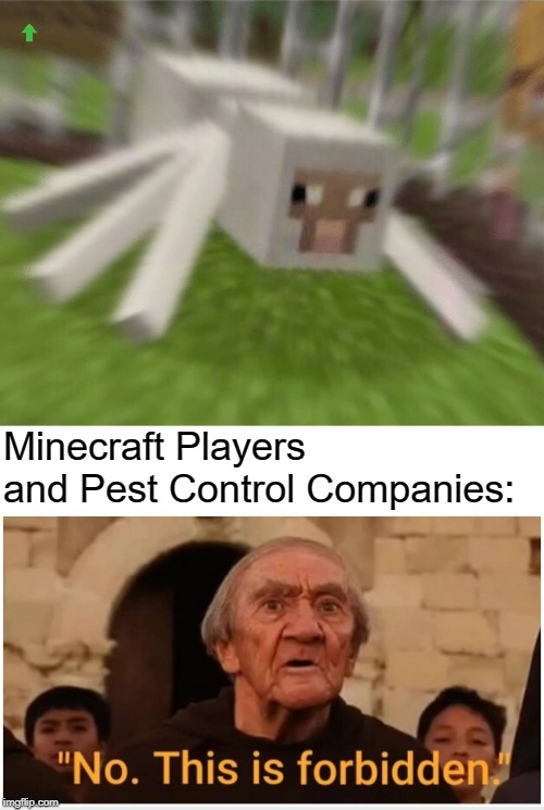 MAXIMUM NIGHTMARE FUEL!!! | Minecraft Players and Pest Control Companies: | image tagged in no this is forbidden,nope,screwthatville,minecraft,funny memes,funny | made w/ Imgflip meme maker
