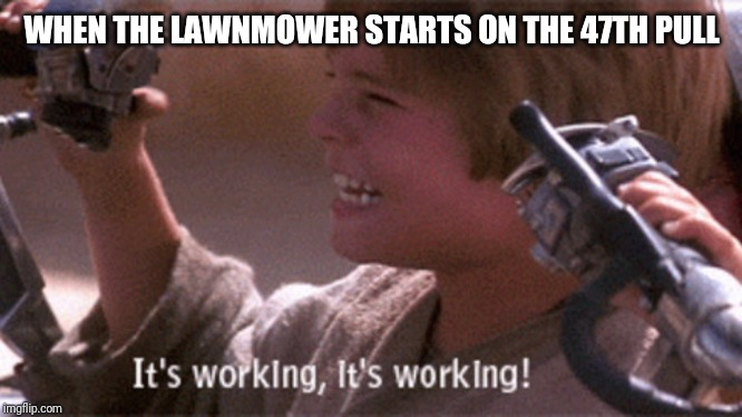 When the lawnmower starts on the 47th pull |  WHEN THE LAWNMOWER STARTS ON THE 47TH PULL | image tagged in lawnmower,dad,anakin skywalker,star wars,yard work | made w/ Imgflip meme maker