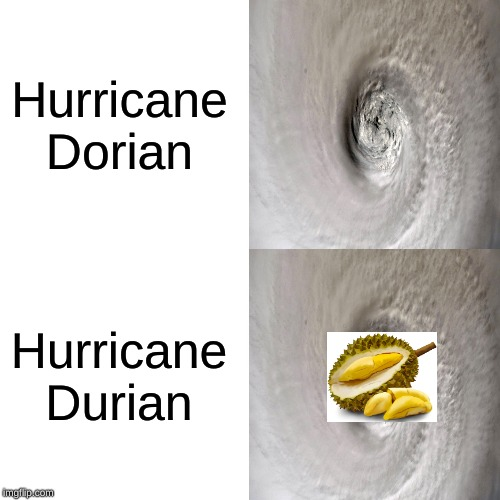 Came up w/ this idea myself, but also saw it used on another site. Although, this format differs from theirs. | Hurricane Dorian Hurricane Durian | image tagged in hurricane dorian,hurricane,durian,fruit,memes,funny | made w/ Imgflip meme maker