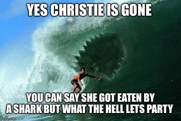 YES CHRISTIE IS GONE YOU CAN SAY SHE GOT EATEN BY A SHARK BUT WHAT THE HELL LETS PARTY | image tagged in anonymous watching big brother | made w/ Imgflip meme maker