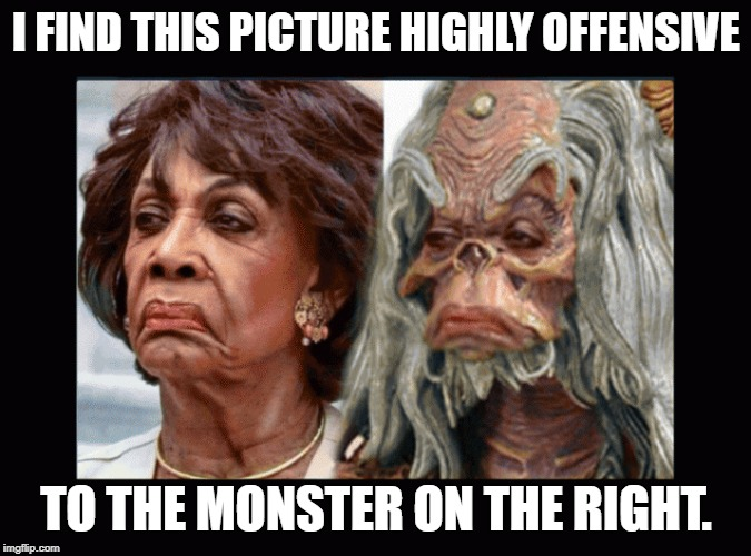 Maxine Waters |  I FIND THIS PICTURE HIGHLY OFFENSIVE; TO THE MONSTER ON THE RIGHT. | image tagged in maxine waters,waters,monster,lookalike,clones | made w/ Imgflip meme maker