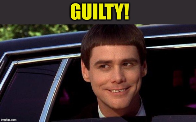 dumb and dumber | GUILTY! | image tagged in dumb and dumber | made w/ Imgflip meme maker