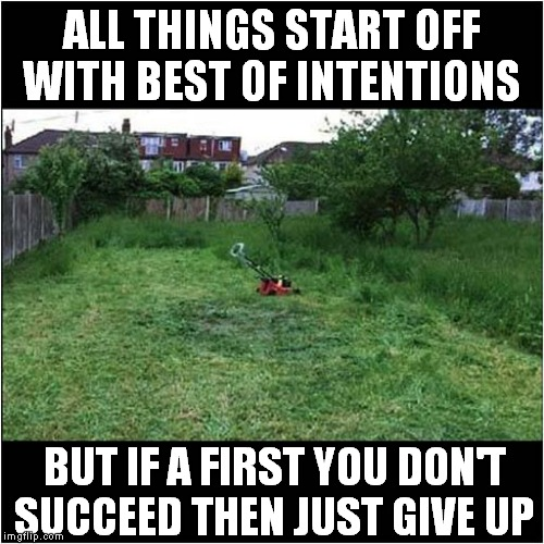 One Man Went To Mow, Went To Mow A Meadow. | ALL THINGS START OFF WITH BEST OF INTENTIONS BUT IF A FIRST YOU DON'T SUCCEED THEN JUST GIVE UP | image tagged in fun,lawnmower | made w/ Imgflip meme maker